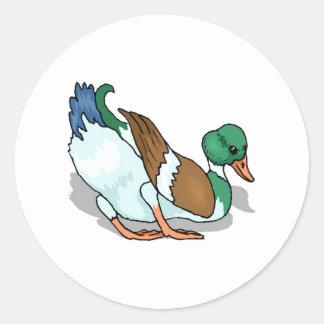 Mallard Duck Round Sticker