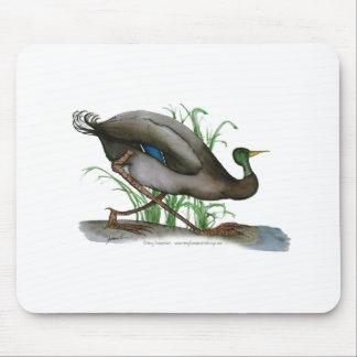mallard duck - wild bird, tony fernandes mouse pad