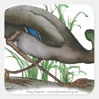 mallard duck - wild bird, tony fernandes square sticker