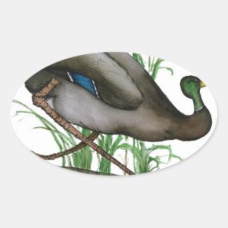mallard duck - wild bird, tony fernandes oval sticker