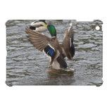 Mallard Duck Wildlife Photo iPad Mini Case
