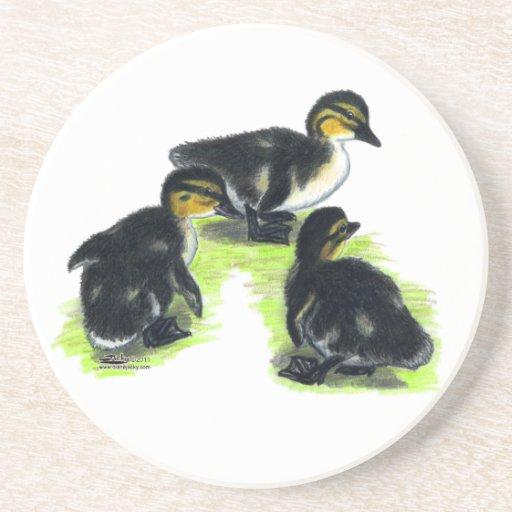 Mallard Ducklings Coaster