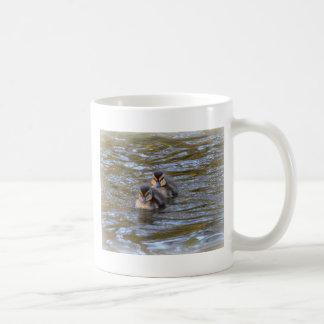 Mallard Ducklings Classic White Coffee Mug