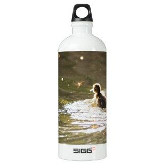 Mallard Ducklings Water Bottle