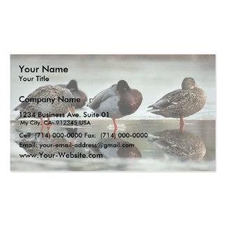Mallard Ducks Business Card