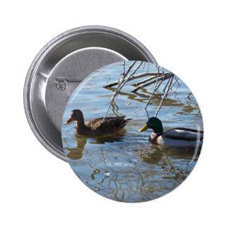 Mallard Ducks Button