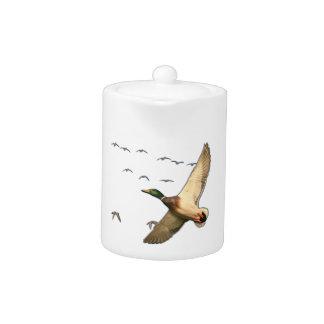 Mallard ducks Canadian geese Teapot