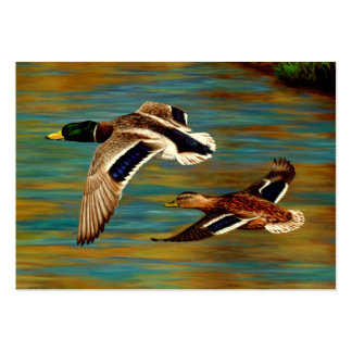 Mallard Ducks Flying Large Business Cards (Pack Of 100)