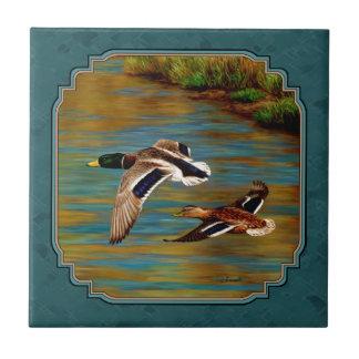 Mallard Ducks in Flight Teal Tile