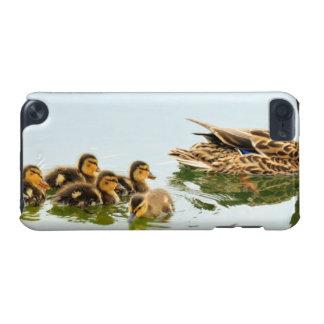 mallard ducks iPod touch 5G cover