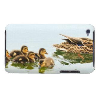 mallard ducks iPod touch cases