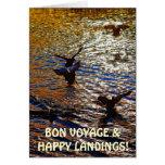 MALLARD DUCKS Landing Traveler Photo Greeting Card