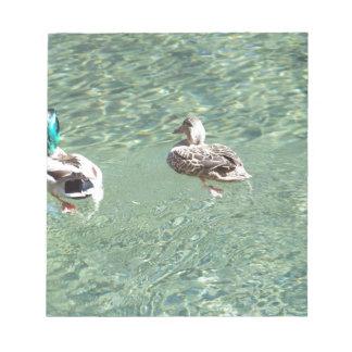 Mallard Ducks Note Pad