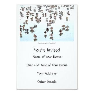 Mallard Ducks on a Frozen Pond Card