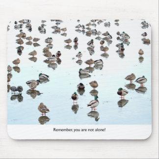 Mallard Ducks on a Frozen Pond Mousepad