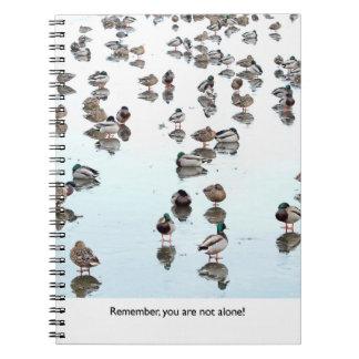 Mallard Ducks on a Frozen Pond Spiral Notebook