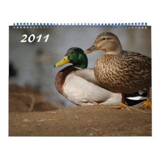 Mallard Ducks Photo Calendar