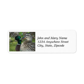 Mallard Ducks Photo Return Address Labels