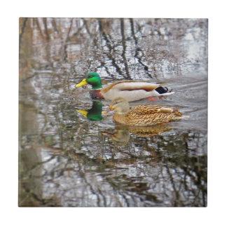 Mallard Ducks Tile