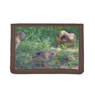 Mallard Ducks Wallet