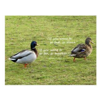 Mallard Ducks with African Proverb Postcard
