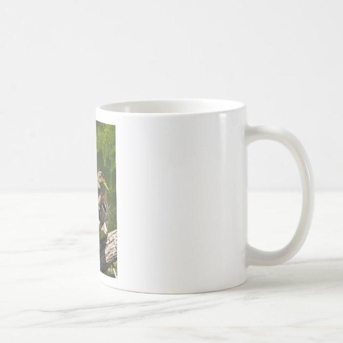 Mallard Female Coffee Mug