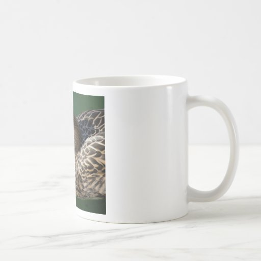 Mallard Female Duck Classic White Coffee Mug