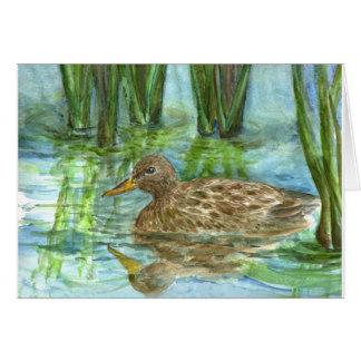 Mallard Female Swims through the Marsh, watercolor Card
