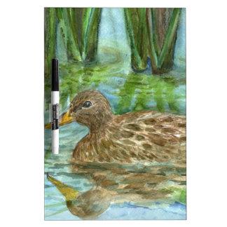 Mallard Female Swims through the Marsh, watercolor Dry-Erase Boards