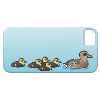 Mallard & five ducklings iPhone SE/5/5s case