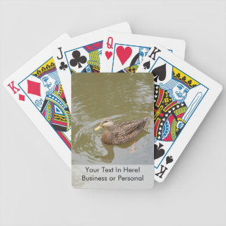 mallard hen in water duck animal feather bird bicycle playing cards