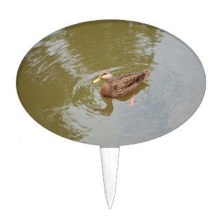 mallard hen in water duck animal feather bird cake topper