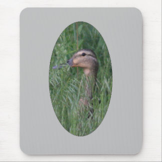Mallard in the Grass Mousepad