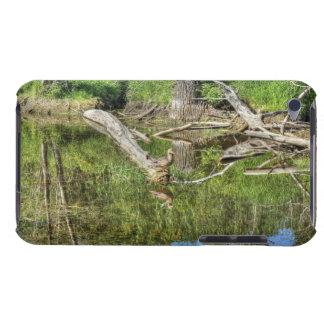 Mallard on Pond Barely There iPod Cases