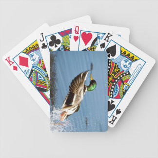 Mallard Playing Cards