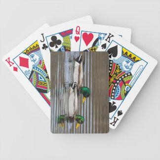 Mallard Bicycle Card Decks
