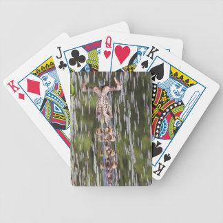 Mallard Bicycle Poker Cards