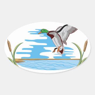 Mallard Scene Oval Sticker