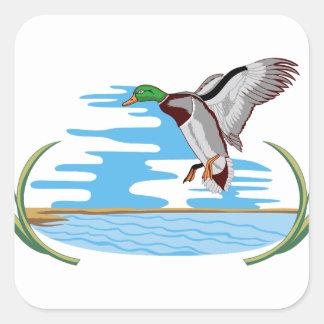 Mallard Scene Square Sticker