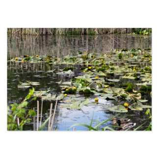 Mallards and Lilies Large Business Cards (Pack Of 100)