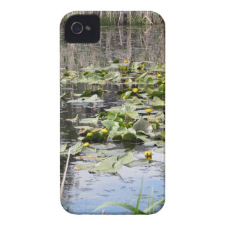 Mallards and Lilies Case-Mate Blackberry Case
