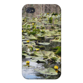Mallards and Lilies iPhone 4 Case