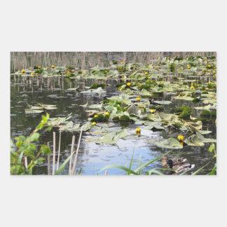 Mallards and Lilies Rectangular Sticker
