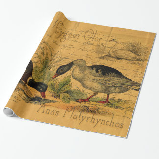 Mallards and Swan Collage Wrapping Paper