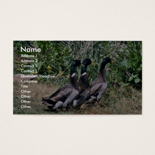 Mallards Business Card