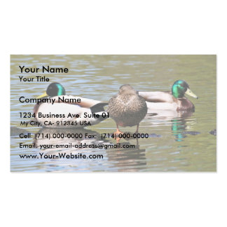 Mallards Business Card Templates