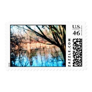 Mallards in the Mist Postage Stamp