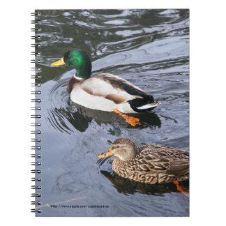 Mallards Notebook