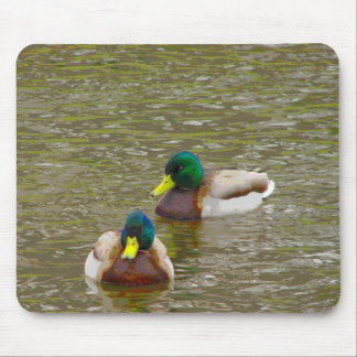 Mallards on the water mouse pad
