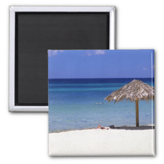 Malmok Beach, Aruba, Netherlands Antilles 2 Inch Square Magnet